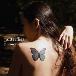 ruco artwork butterflies